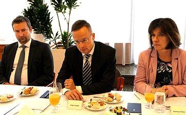 Делегация Совета Федерации провела рабочую встречу сруководителем внешнеполитического ведомства Венгрии Петером Сийярто