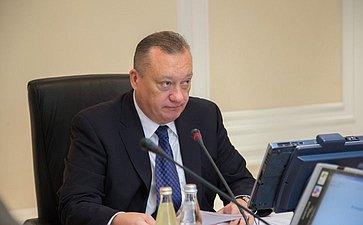 В. Тюльпанов провел заседание Комитета СФ поРегламенту иорганизации парламентской деятельности