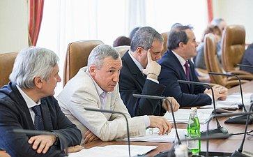 Заседание комитета по международной политике-9 Климов