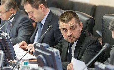 Заседание Комитета Совета Федерации по Регламенту и организации парламентской деятельности Мамедов