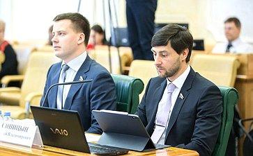 Александр Пронюшкин иАлексей Синицын