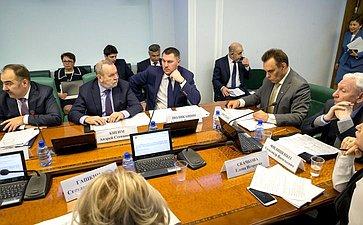 Заседание Комитета СФ посоцполитике