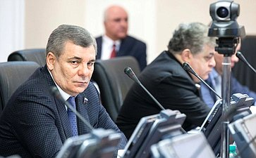 А. Каноков назаседании Комитета помеждународным делам