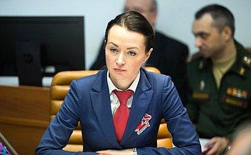 Расширенное совещание Комитета СФ пообороне ибезопасности