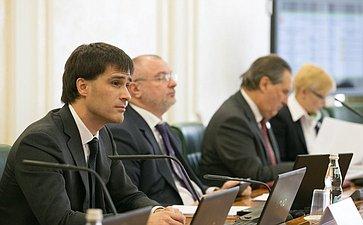 Р. Гаттаров назаседании Комитета Совета Федерации поконституционному законодательству игосударственному строительству