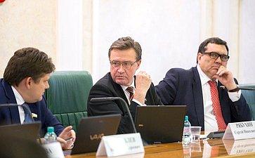 С. Рябухин провел расширенное заседание Комитета СФ побюджету ифинансовым рынкам