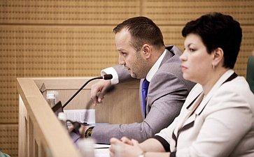 Константин Добрынин на 358 заседании Совета Федерации