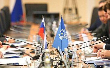 Встреча сенаторов РФ сгруппой международных наблюдателей отМПА СНГ навыборах депутатов ГД