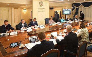 Встреча Председателя Совета Федерации Валентины Матвиенко стружениками социальной сферы села
