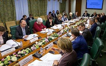 Заседание рабочей группы Комитета СФ посоциальной политике поразработке законопроекта «Омолодежи игосударственной молодежной политике вРФ»