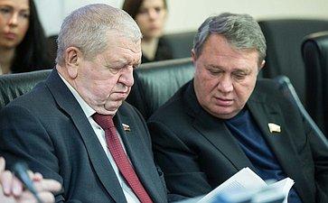 Заседание Комитета Совета Федерации по Регламенту и организации парламентской деятельности