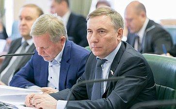 А. Варфоломеев назаседании Комитета Совета Федерации поконституционному законодательству игосударственному строительству