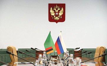 Константин Косачев провел встречу сЧрезвычайным иПолномочным Послом Республики Замбии вРФ