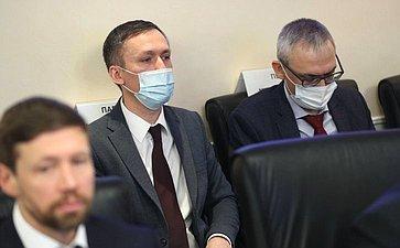 Расширенное заседание Комитета СФ понауке, образованию икультуре врамках Дней Амурской области вСФ