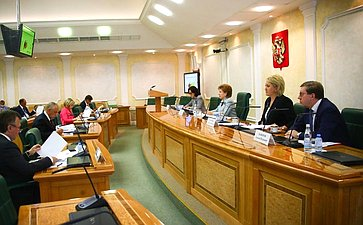 Первое заседание Временной комиссии СФ посохранению иразвитию народных художественных промыслов
