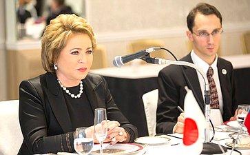 В. Матвиенко навстрече делегации СФ спредставителями организации «Совет дружественных обменов»