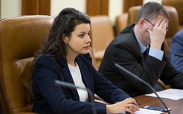 Заседание временной Комиссии СФ по развитию информационного общества