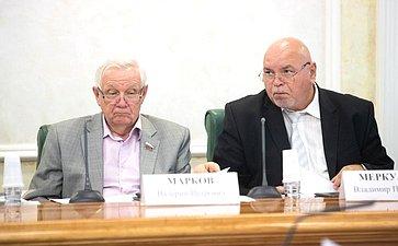 В. Марков иВ. Меркулов