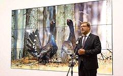 К. Косачев: ВСовете Федерации ивпредь будут оказывать поддержку фестивалю «Первозданная Россия»