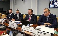 ВСовете Федерации обсудили тему развития доступных ичистых источниках энергии