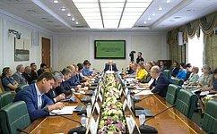 ВСовете Федерации рассмотрели вопросы совершенствования воспроизводства лесов илесоразведения