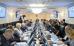 Профессиональные риски вадвокатской деятельности обсудили вСовете Федерации