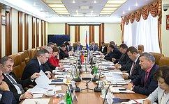 ВСФ прошло заседание Межпарламентской комиссии посотрудничеству Федерального Собрания РФ иНационального Собрания Республики Армения