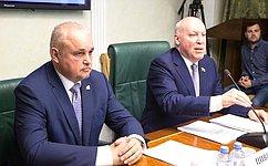 Актуальные вопросы развития инфраструктуры Кузбасса рассмотрел Комитет СФ поэкономической политике