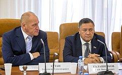 ВСовете Федерации состоялось обсуждение темы «Цифровая экономика ичеловеческий капитал»