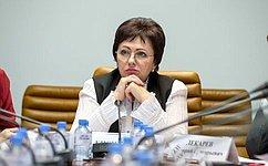 Е. Бибикова: Активное сотрудничество сгражданами наместах– одно изглавных условий для реализации нацпроектов