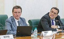 Профильный Комитет СФ обсудил вопросы обеспечения расходных обязательств регионов напримере Удмуртии