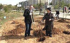 А. Башкин принял участие впосадке деревьев ицветов вСквере ветеранов вАстрахани