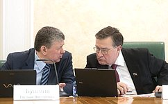 Сбалансированность бюджетов регионов напримере Забайкальского края рассмотрел Комитет СФ побюджету ифинансовым рынкам
