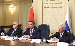 Парламентарии России иБеларуси обсудили перспективные направления права ицифровизации вСоюзном государстве