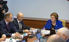 Реализация Стратегии государственной культурной политики вБрянской области обсуждалась назаседании профильного Комитета СФ