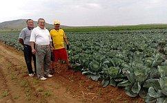 А.Тулохонов посетил коллективное фермерское хозяйство вИволгинском районе Бурятии