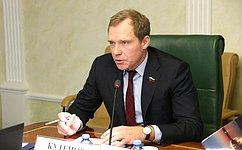 Инвестиционный капитал иинфраструктурное развитие Амурской области рассмотрел Комитет СФ поэкономической политике