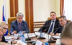ВКомитете СФ пообороне ибезопасности обсудили вопрос обустановлении пункта пропуска через госграницу ваэропорту Саранска
