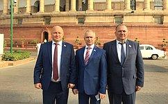 Сенаторы обменялись опытом законотворческой работы синдийскими парламентариями