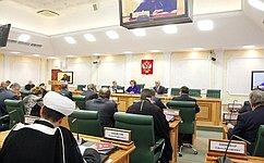 ВСовете Федерации обсудили проект предложения изамечания кпроекту стратегии государственной национальной политики РФ