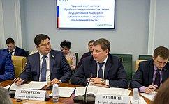 А. Коротков: Совет Федерации работает над созданием условий для развития малого исреднего бизнеса