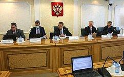 В. Тимченко назаседании профильного Комитета СФ представил пять кандидатур для назначения членами ЦИК России отСовета Федерации