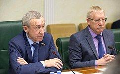 А. Климов провел заседание экспертной группы Временной комиссии СФ