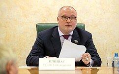 Сенаторы рекомендовали одобрить изменения взакон овыборах Президента РФ