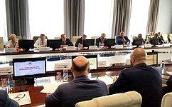 В. Бондарев: Сенаторы анализируют практику нормативного правового регулирования гособоронзаказа всфере государственной военной авиации