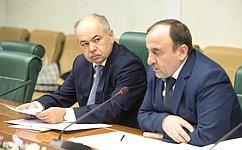 ВСовете Федерации состоялось совещание повопросам организации сезона хаджа