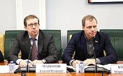 ВСовете Федерации обсудили состояние ипроблемы внедрения системы маркировки товаров