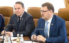 К. Косачев встретился сглавой миссии МККК вСирии М.Гассер
