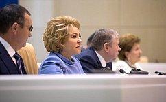 В. Матвиенко предложила проанализировать ситуацию вавиационной отрасли