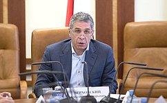 ВСовете Федерации обсудили реализацию закона, касающегося распределения квот добычи водных биологических ресурсов